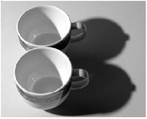 teacups with shadow boobs pic